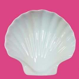 Concha – Coquille 14x14x3,5 cm